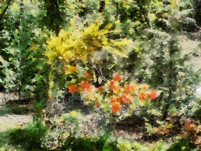 Cezanne Preset
