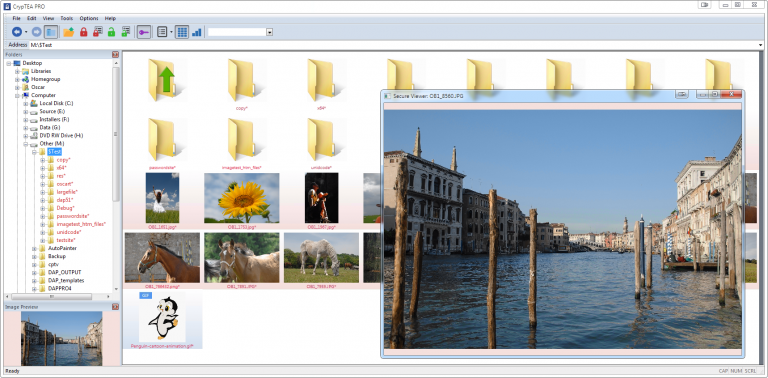 Internal Picture and Thumbnail Viewer for Encrypted Files